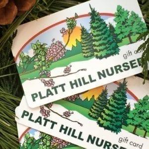 Platt Hill Nursery Gift Cards in evergreen