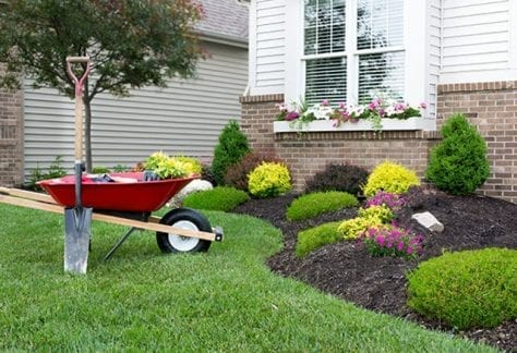 DIY, landscaping, curb appeal