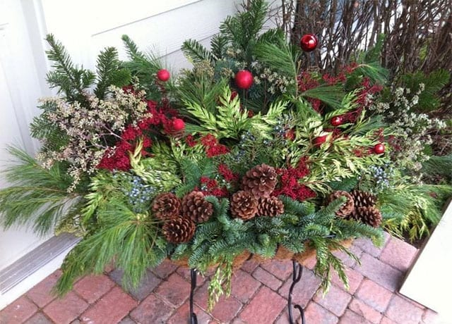 winter planter, holiday p[lanter, fresh cut greens, porch pot