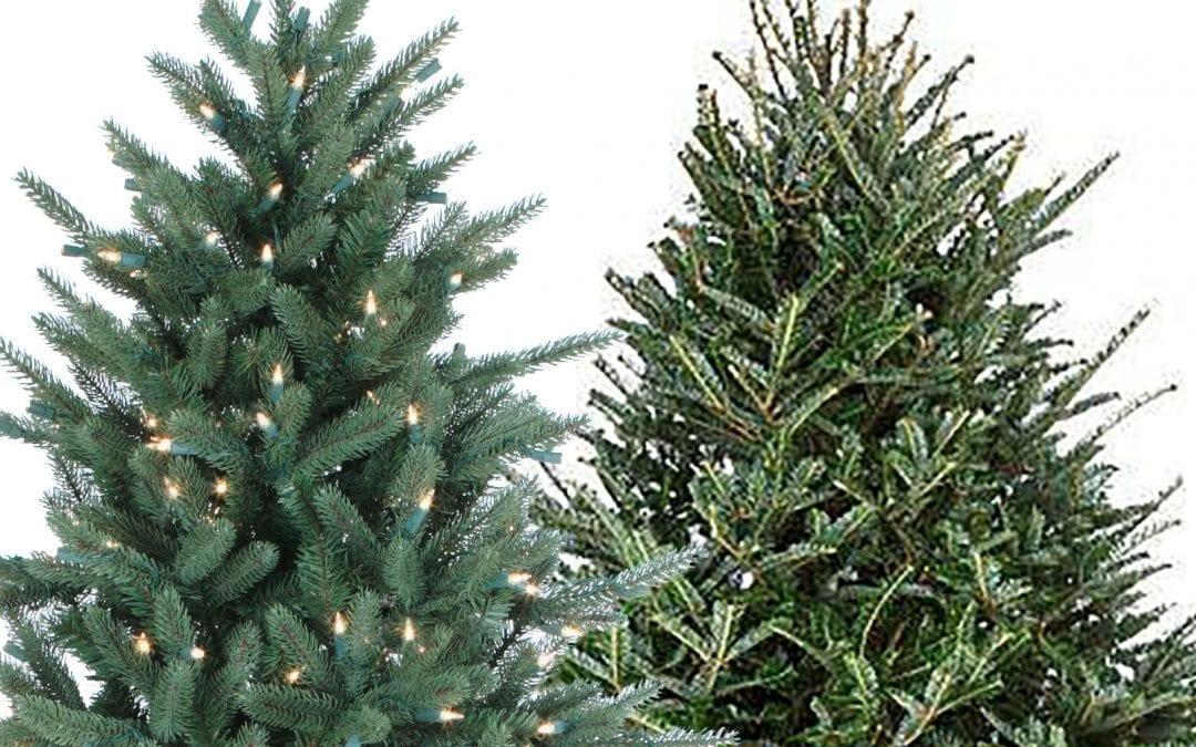 Artificial vs Fresh-cut Christmas Trees