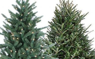 Artificial vs Fresh-cut Christmas Trees
