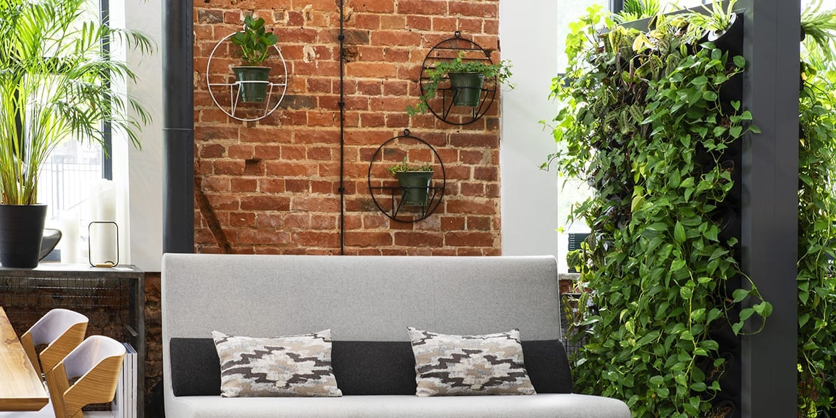 Create A Vertical Green Wall With Houseplants Visit The Plant Experts At Platt Hill Nursery