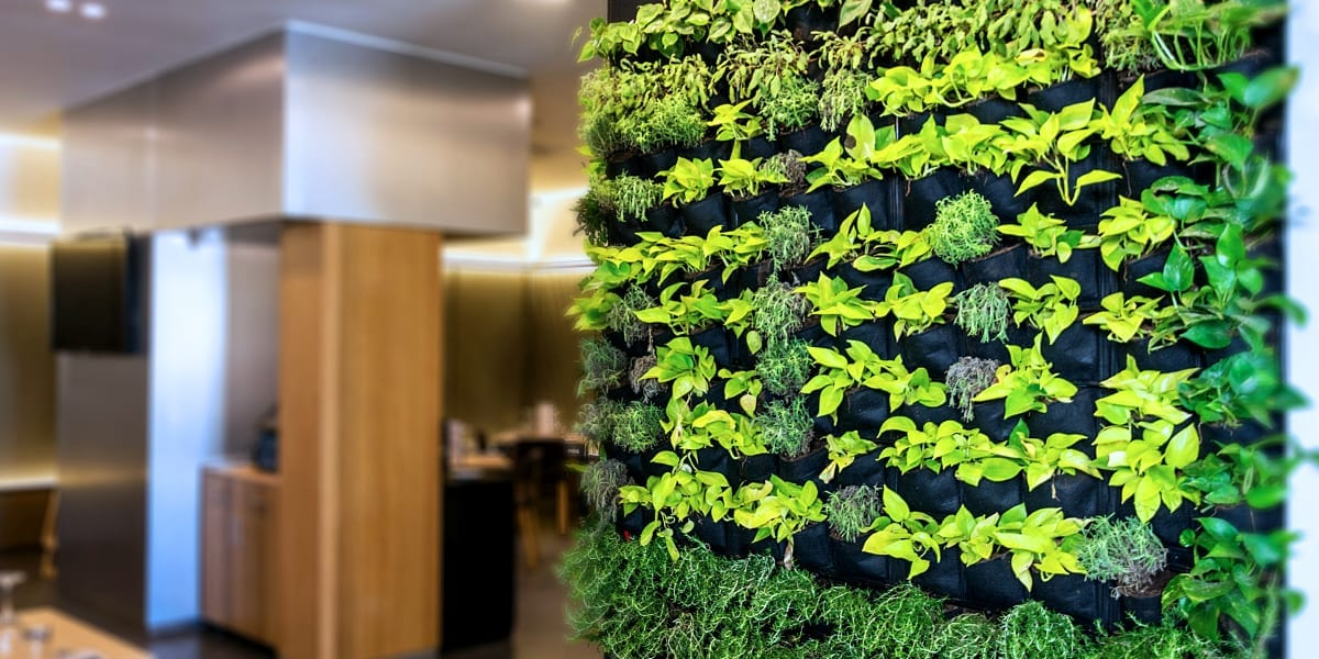 creating-a-vertical-garden-modern-kitchen-with-living-wall