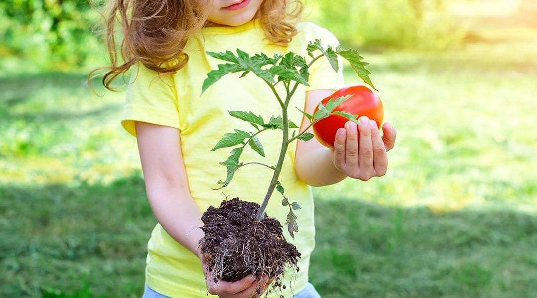 Kid-Friendly Edible Gardening Projects