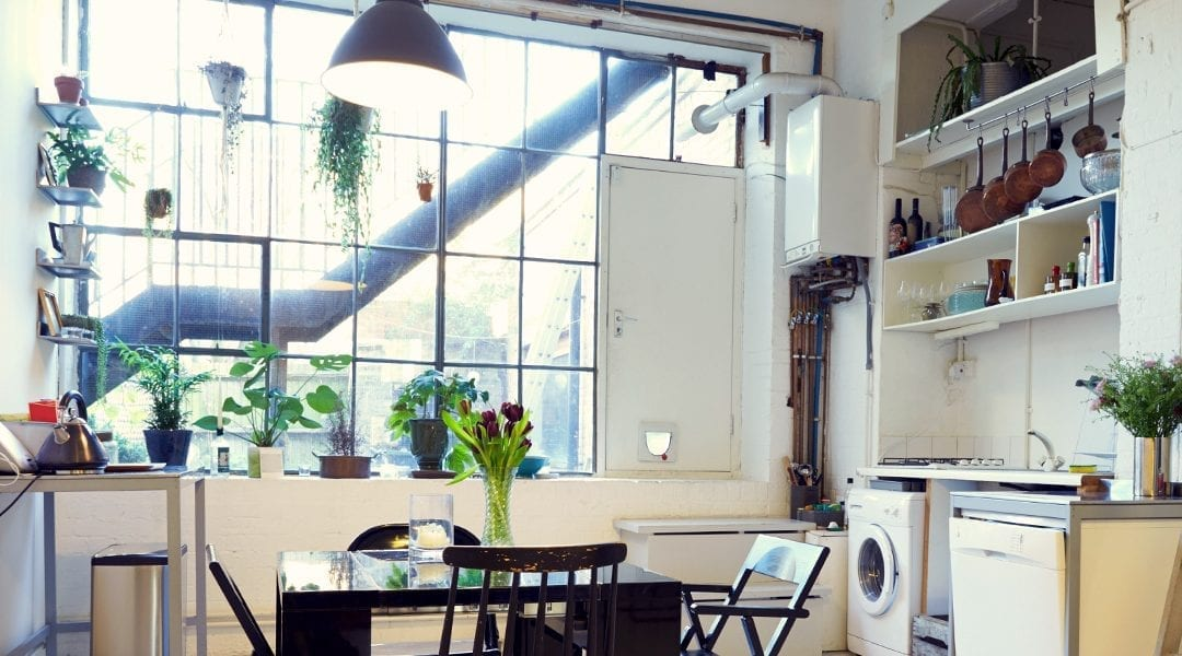 3 Ways to Maximize Space Around Windows for Houseplants