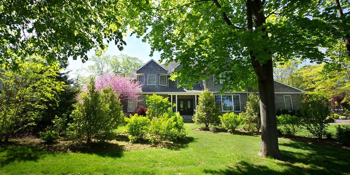 advantages-of-big-trees-shaded-backyard