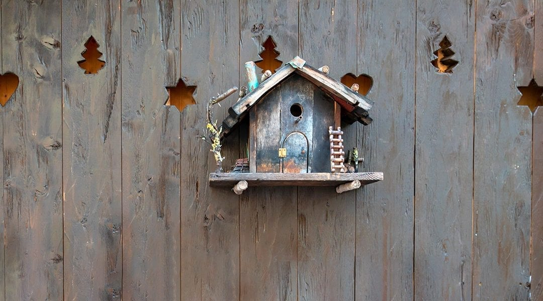 gardening-crafts-for-kids-decorative-birdhouse