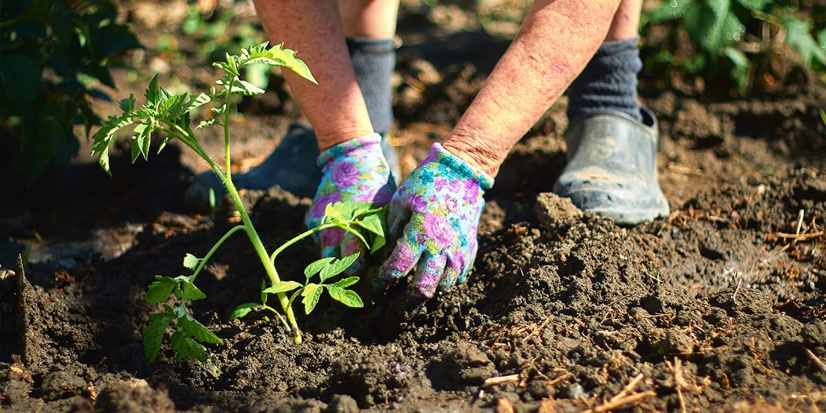 stay-fit-activities-person-gardening