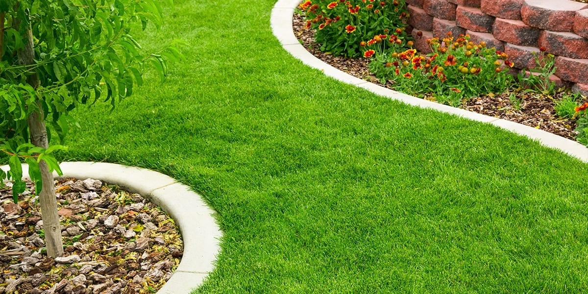 dad-DIY-landscaping-grass-platt-hill