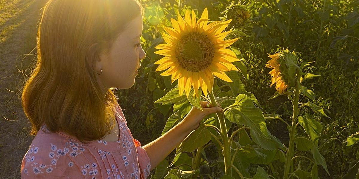 garden-plants-soothing-stress-sunflower-child