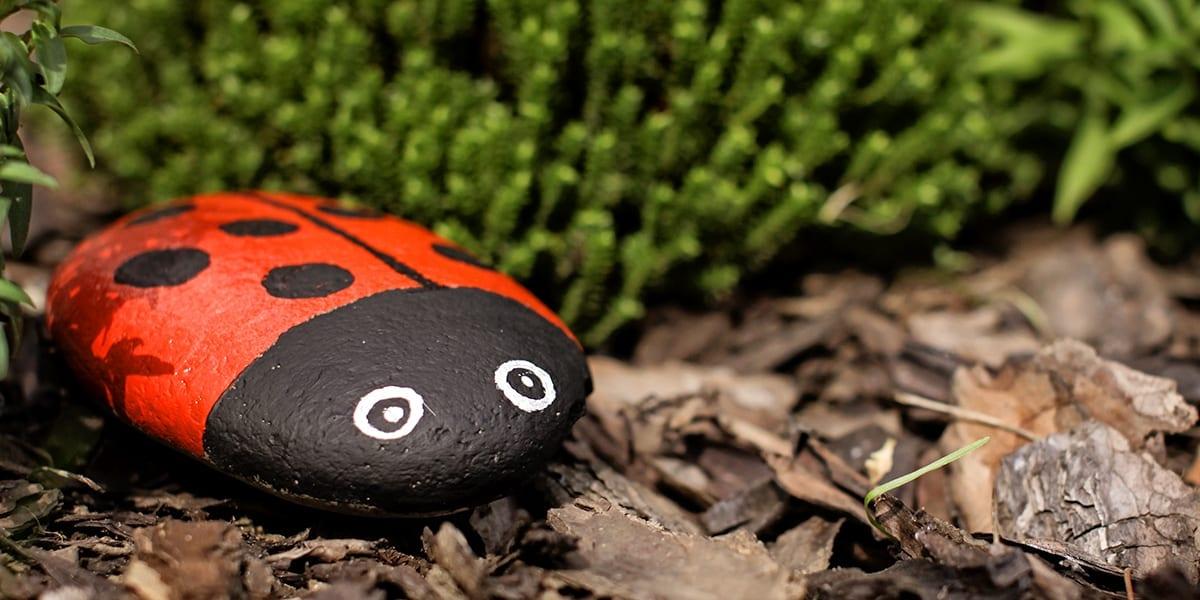 hummingbird-friends-ideas-for-kids-ladybug-rock