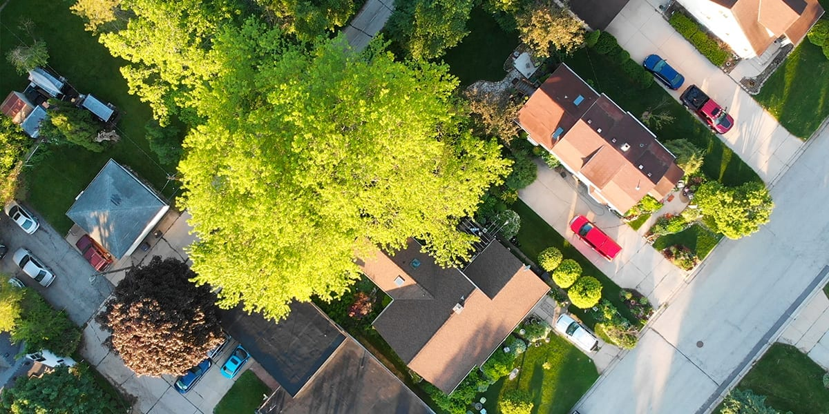 cool-shade-trees-aerial-view-platt-hill