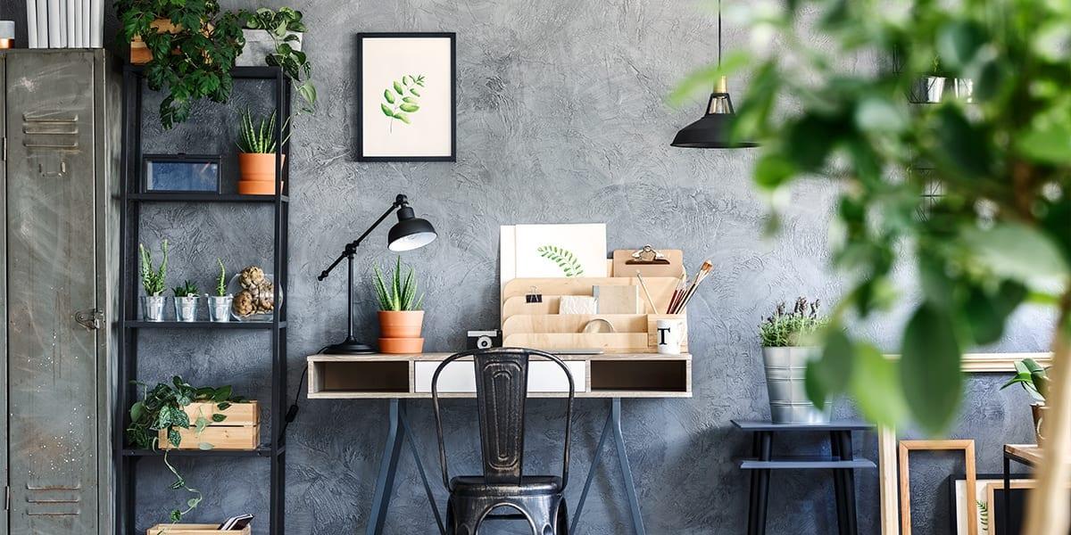 platt-hill-houseplants-help-you-study-art-studio