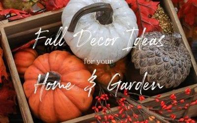 Fall Decor Ideas for Your Home & Garden