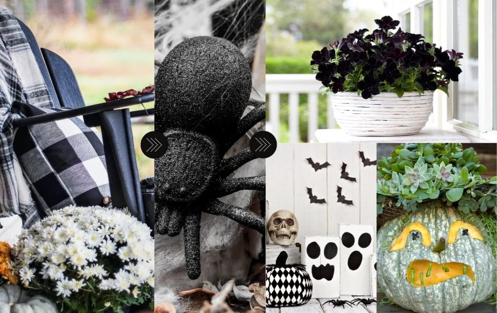 Fall decor ideas - how to transition black and white fall to halloween