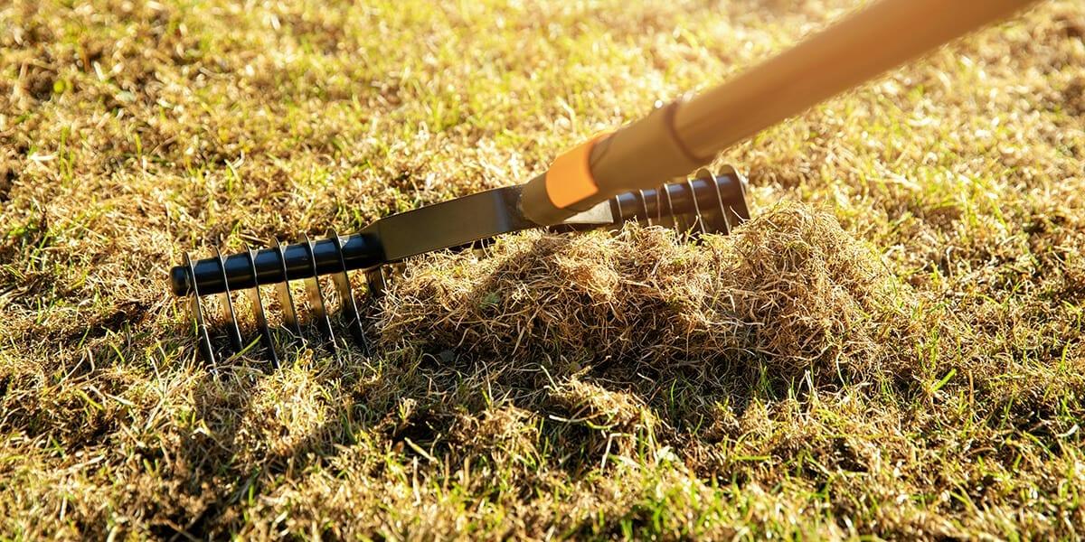 platt-hill-fall-lawn-care-checklist-dethatching-grass-rake