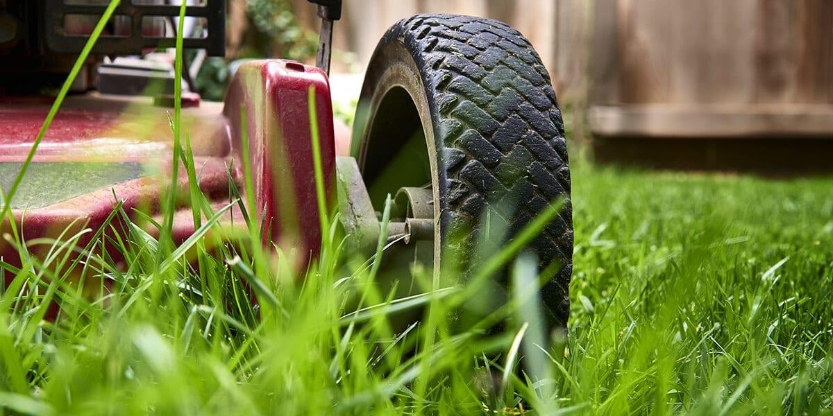 platt-hill-fall-lawn-care-checklist-lawnmower-low-grass
