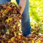 platt-hill-fall-lawn-care-checklist-person-gathering-leaves