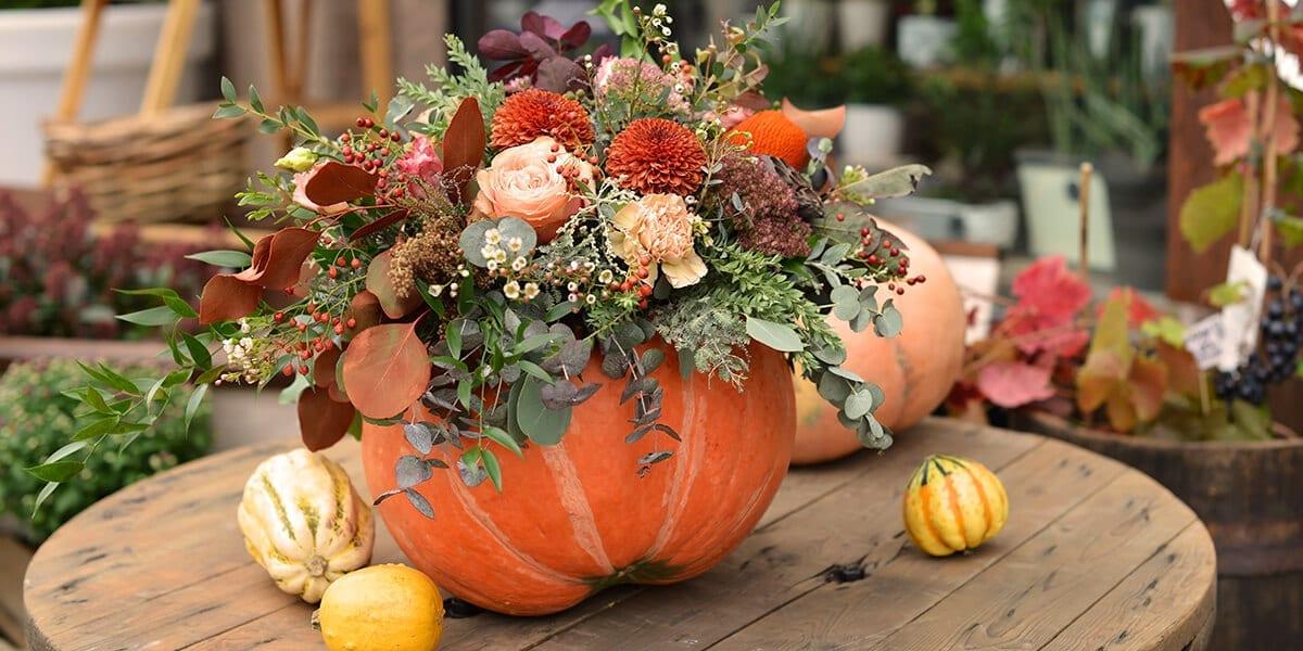 platt-hill-decorate-with-pumpkin-planter