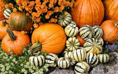 4 Creative Ways to Decorate with Pumpkins