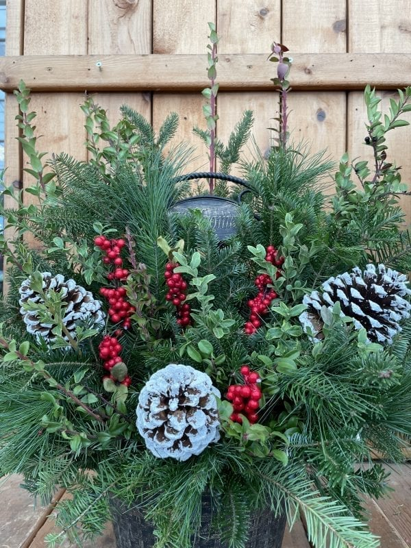 Holiday welcome sign planter with frosted pine cones and red berries