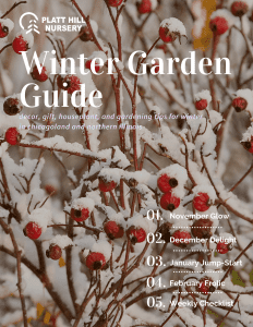 Winter Garden Guide Cover