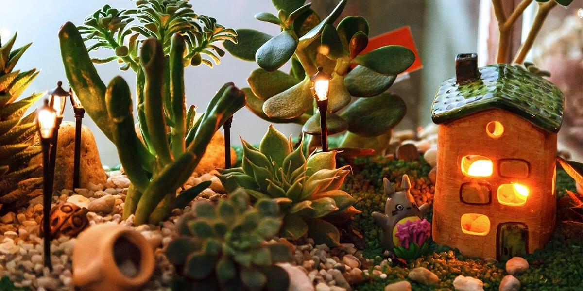platt-hill-DIY-mini-garden-succulents-tiny-decorative-house