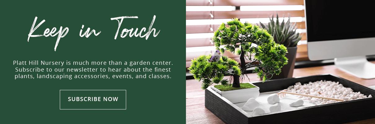 platt-hill-DIY-mini-garden-tiny-zen-garden-office-subscribe-button