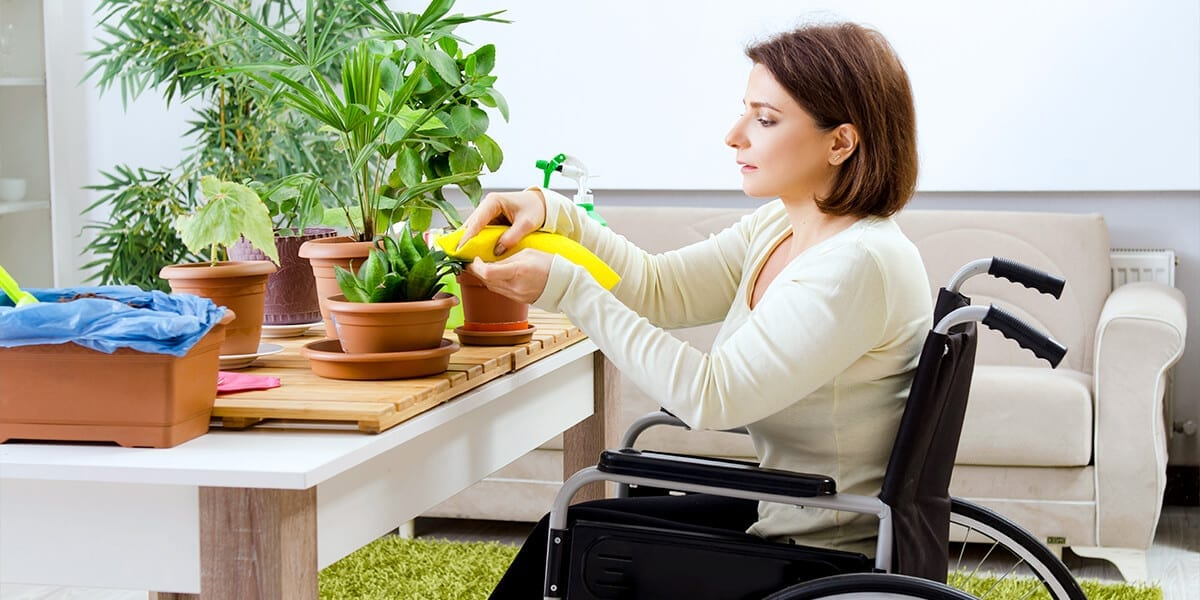 platt-hill-indoor-plant-pests-woman-caring-for-houseplant
