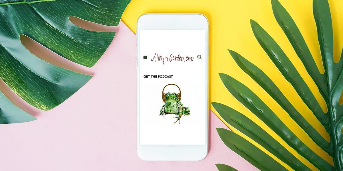 platt-hill-2021-garden-bloggers-influencers-a-way-to-garden-phone-leaves
