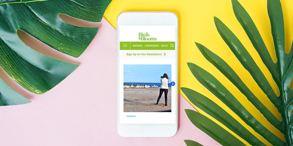 platt-hill-2021-garden-bloggers-influencers-birds-and-blooms-phone-leaves