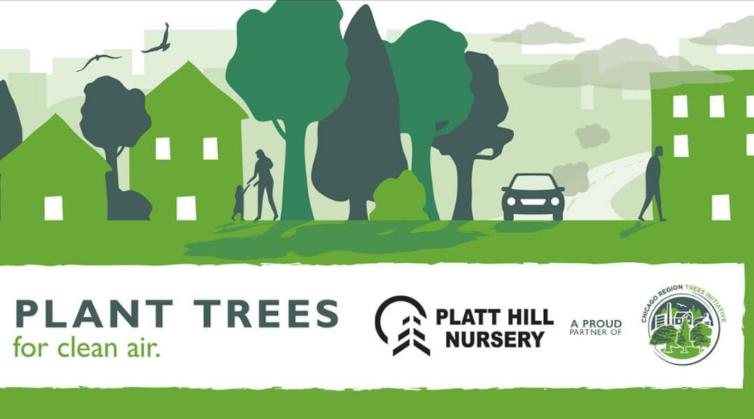 Plant Trees for Clean Air | Platt Hill Nursery