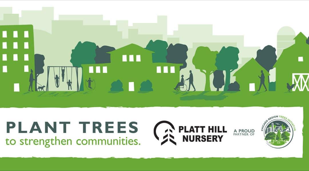 Plant Trees to Strengthen Communities | Platt Hill Nursery