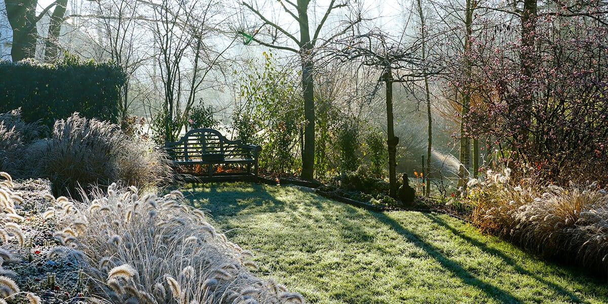 platt hill 2021 garden landscape cold spring garden