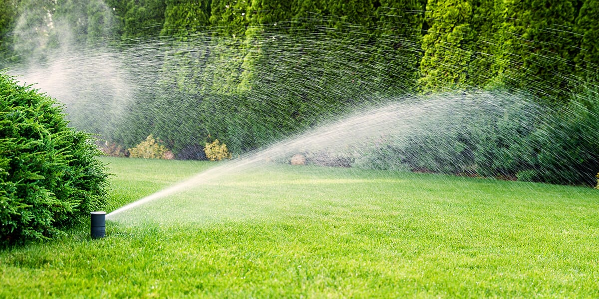 platt hill nursery fixes to common yard issues evergreen landscape irrigation sprinkler grass