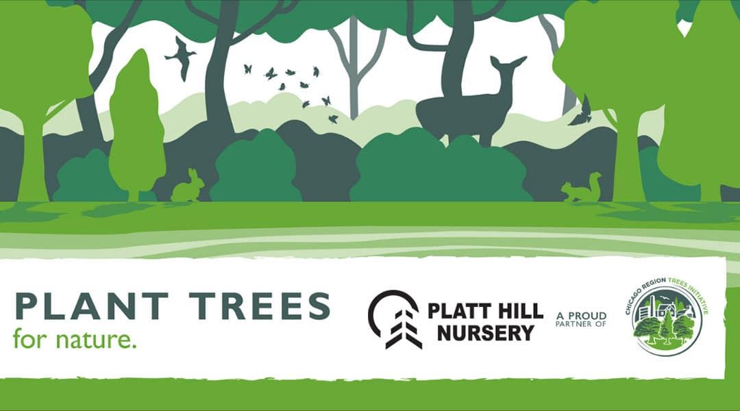 Plant Trees for Nature | Platt Hill Nursery