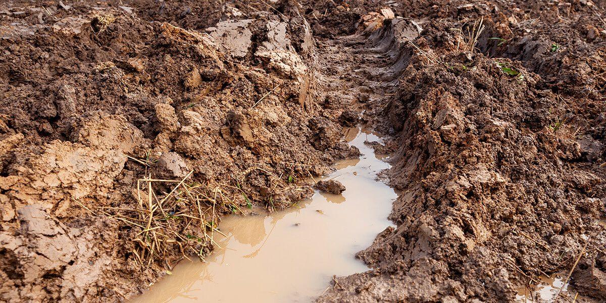 platt hill beginners guide garden soil compacted clay soil