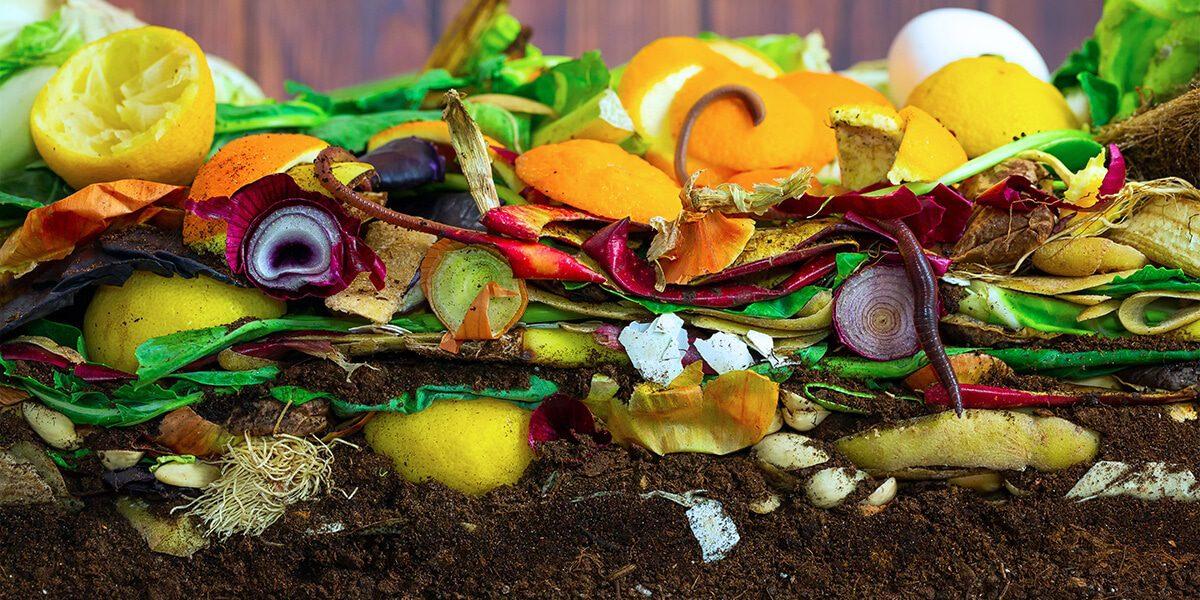 platt hill beginners guide garden soil compost soil organic layers