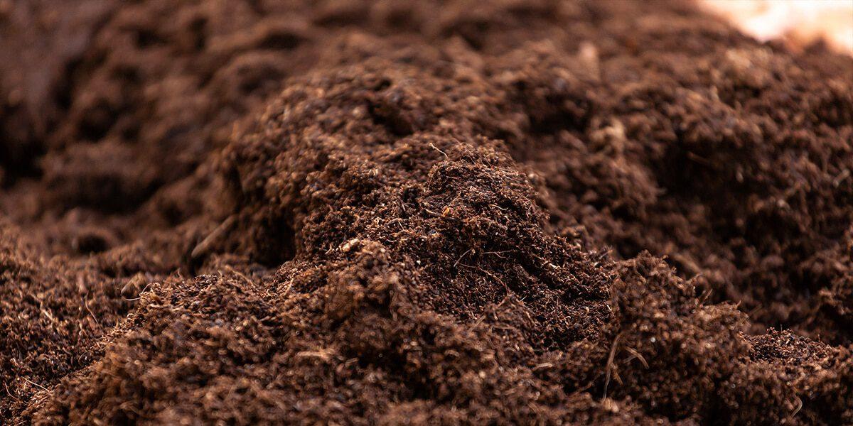 platt hill beginners guide garden soil healthy turned soil