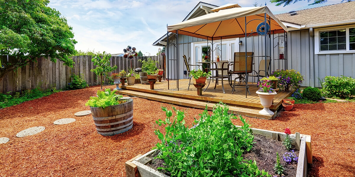 platt hill nursery basics of watering backyard with garden beds