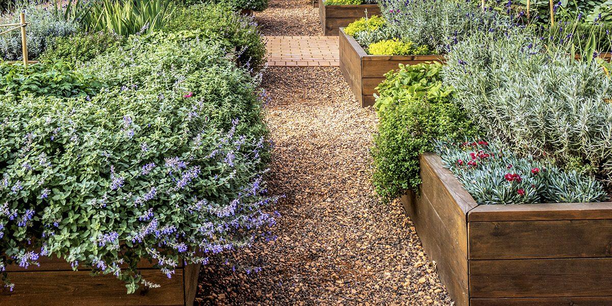 platt hill nursery gardening hacks for beginners raised garden beds