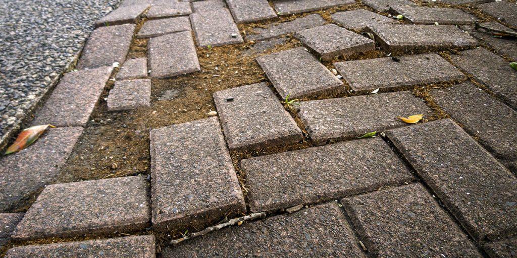 platt hill nursery transform landscape in stages old uneven paving stones