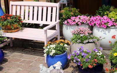 Perfect Pots: Container Inspiration for Small, Medium, and Large Planters