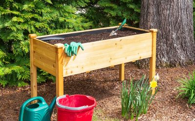 Build a Raised Garden Bed Step-By-Step