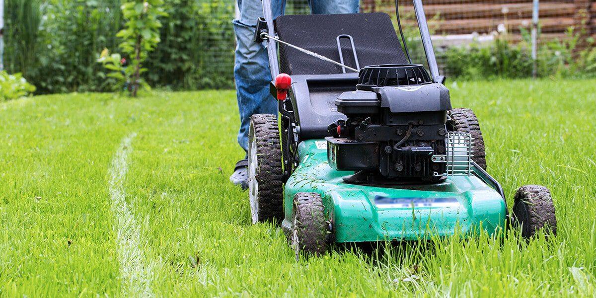 platt hill zone 5 garden checklist mowing lawn