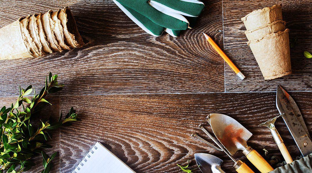 May Gardening Checklist for Zone 5