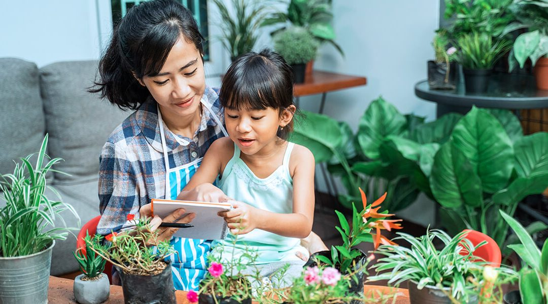 Here's How to Keep Garden Plants Alive
