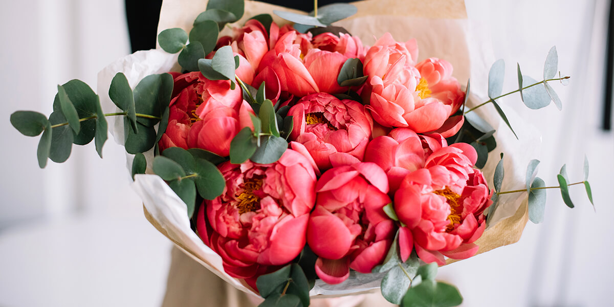 platt hill perfect peonies and care red peony bouquet