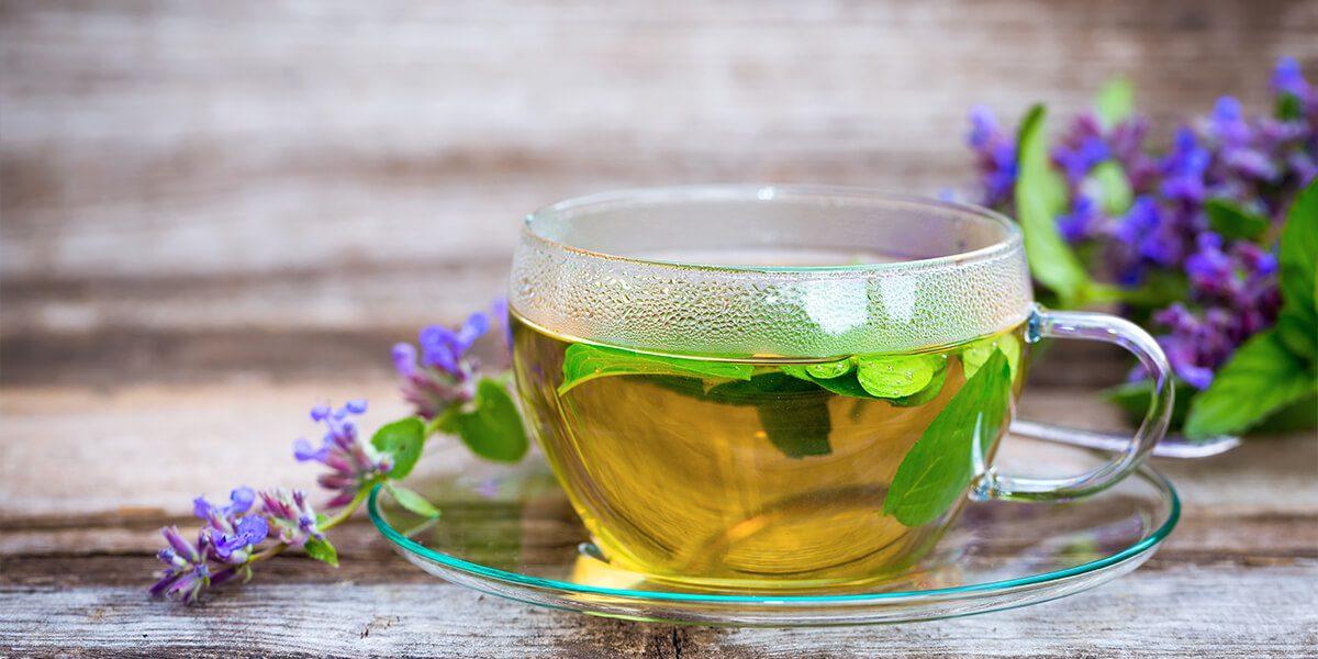 platt-hill-diy-catnip-planter-homemade-tea-leaves