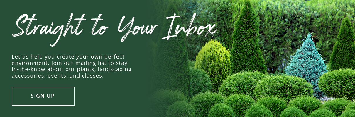 subscribe to our newsletter today! Platt Hill Nursery